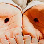 Living a Holy Life: A Lenten Challenge